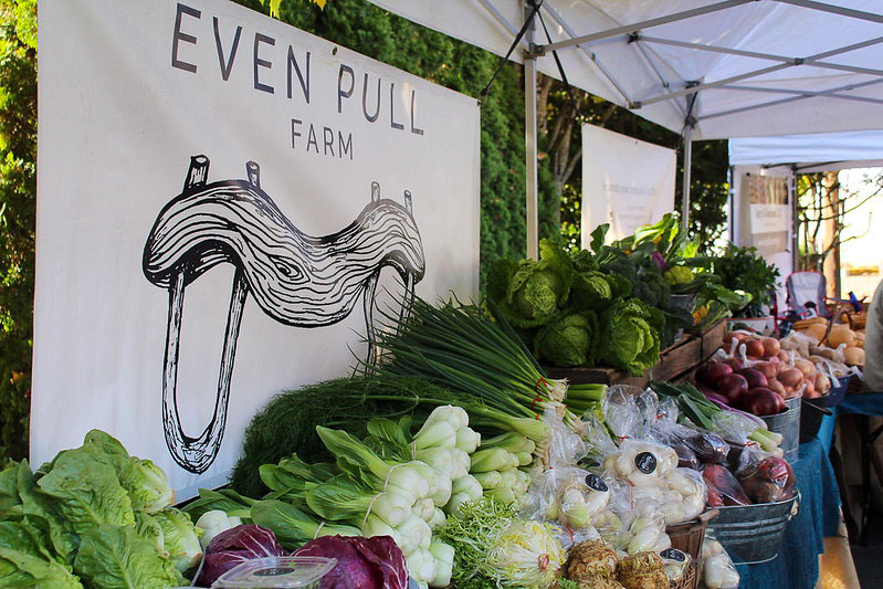 Even Pull at Farmers Market