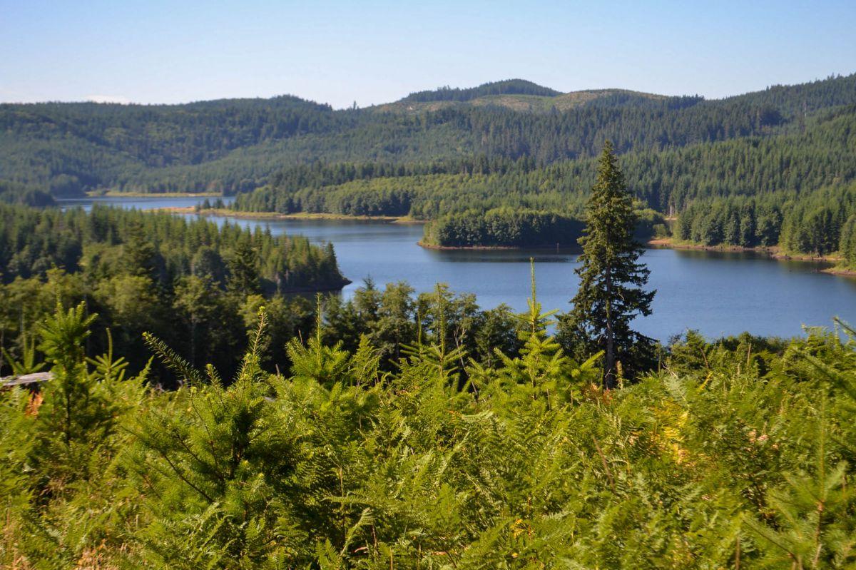 McGuire Reservoir]