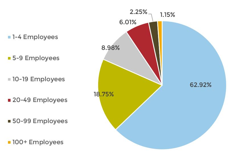 number of employees pie chart